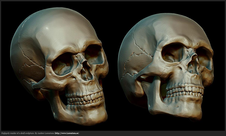 Web anatomy game 8752055 - togelmaya.info